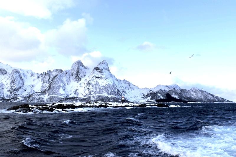 Das große Skrei Abenteuer Lofoten  Landschaft Norwegen