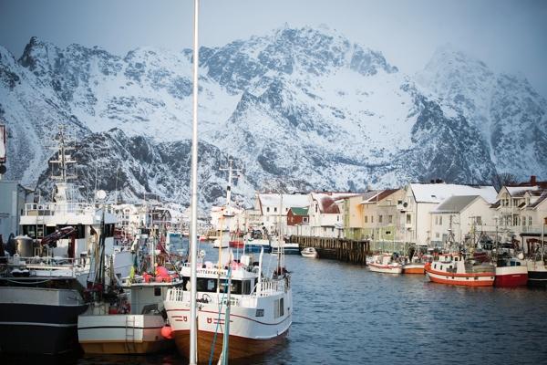Das große Skrei Abenteuer Fischerboote