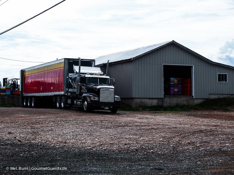 Kanada Nova Scotia Sammelstelle und Truck für Wilde Blaubeeren |GourmetGuerilla.de