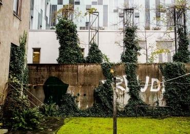 Der Siebzigjährige, der über unsere Gartenmauer sprang  GourmetGuerilla.de
