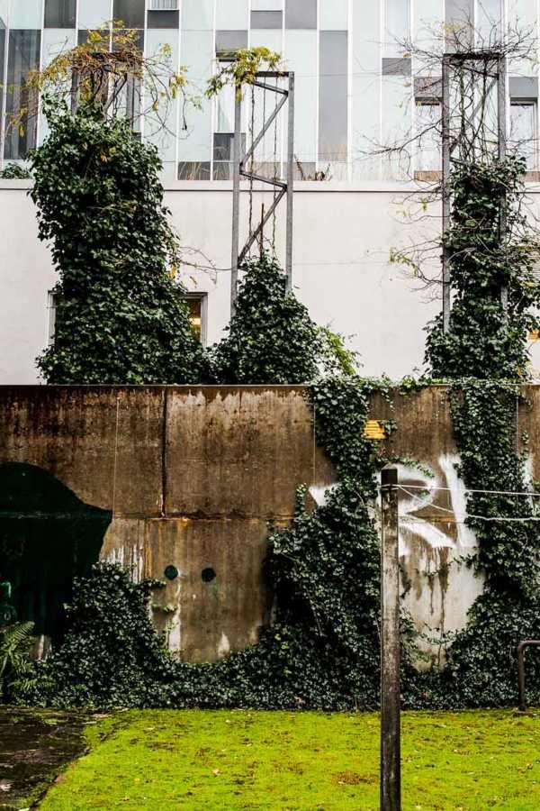 Der Siebzigjährige, der über unsere Gartenmauer sprang |GourmetGuerilla.de