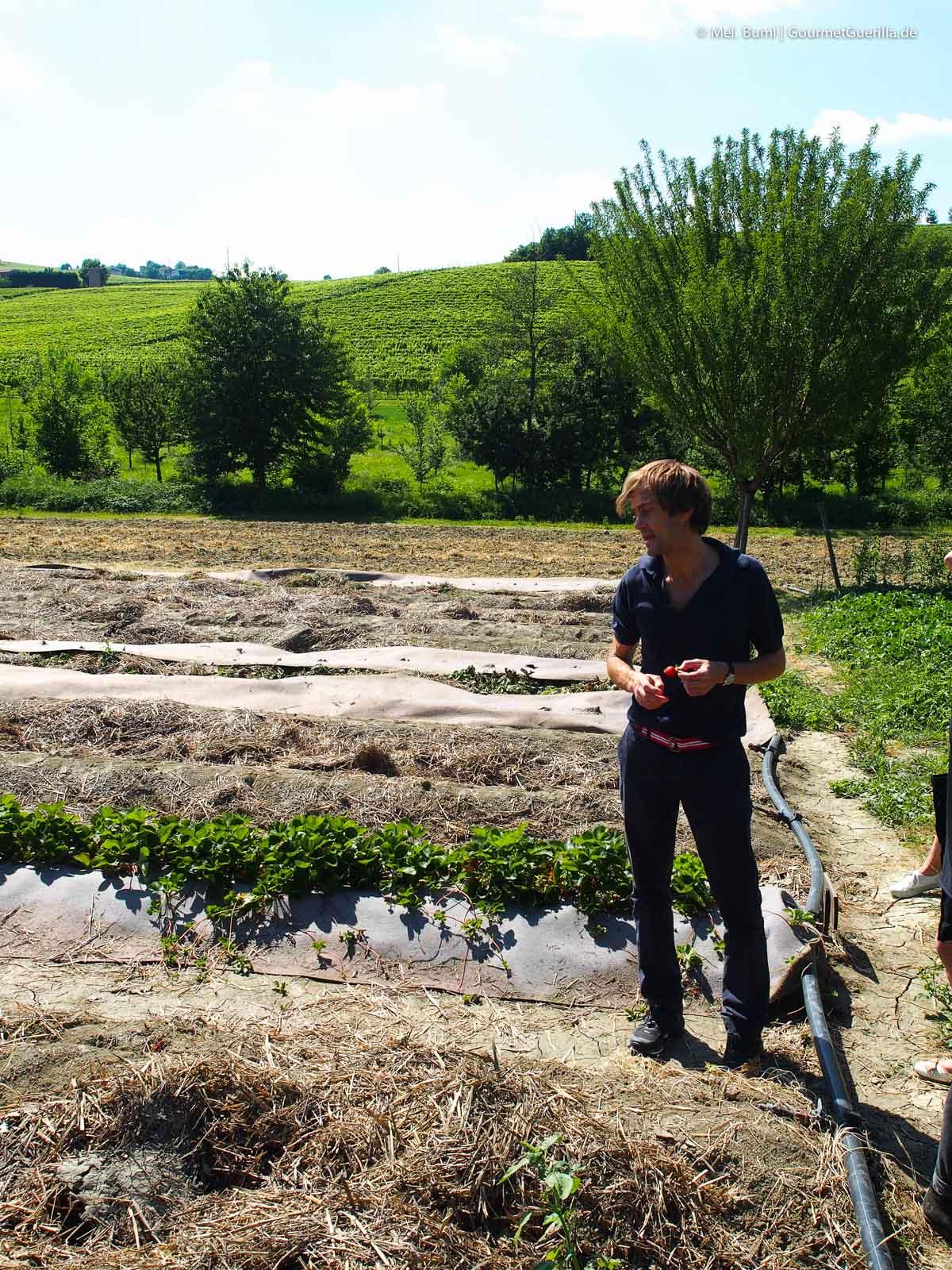 Grom - italiensiches Slow Food Eis aus Turin mit eigener Bio-Plantage |GourmetGuerilla.de
