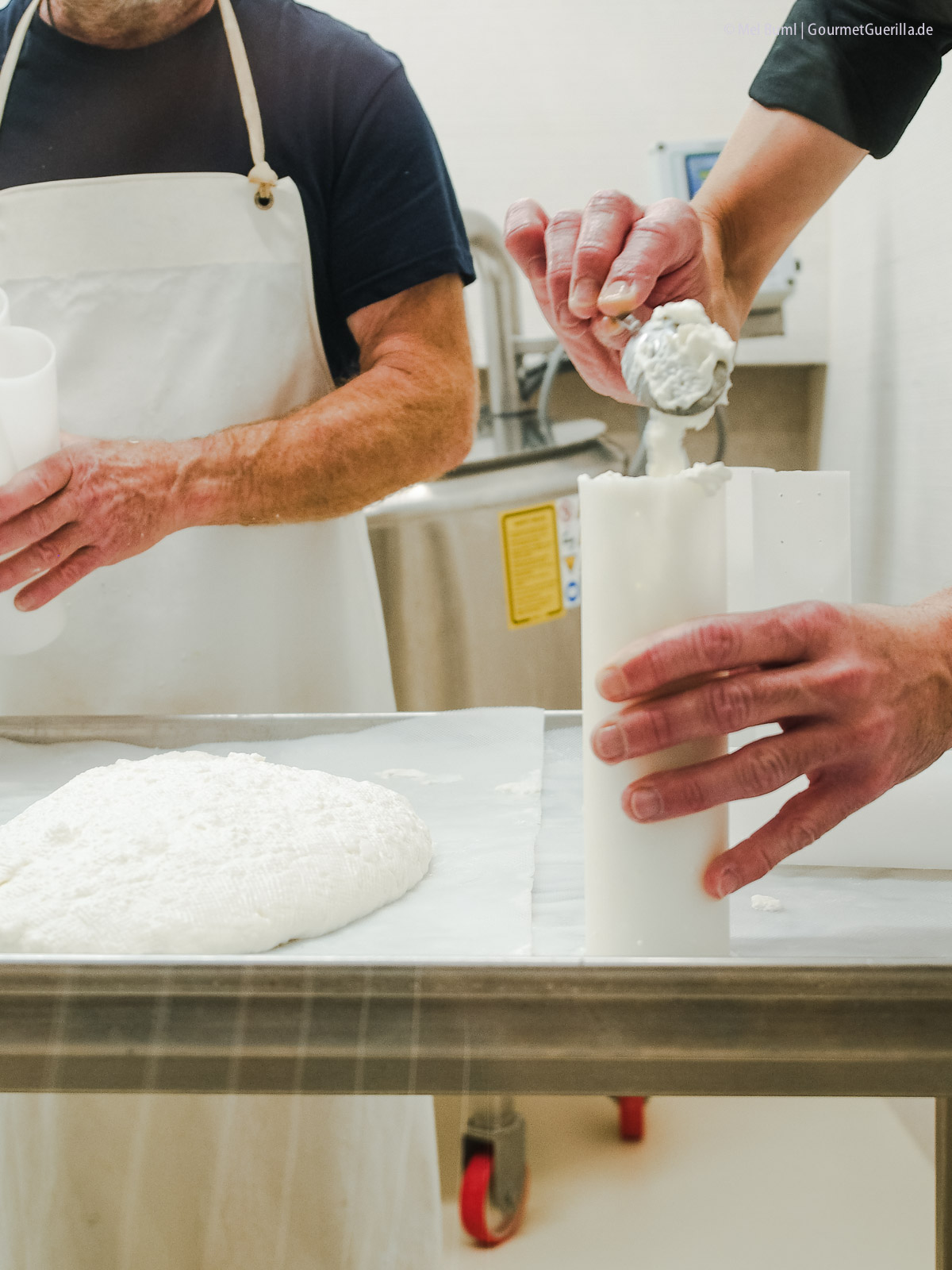 Frischkäse in Formen füllen für Heumilchkäse in Wiens einziger Stadtkäserei Lingenhel |GourmetGuerilla.de