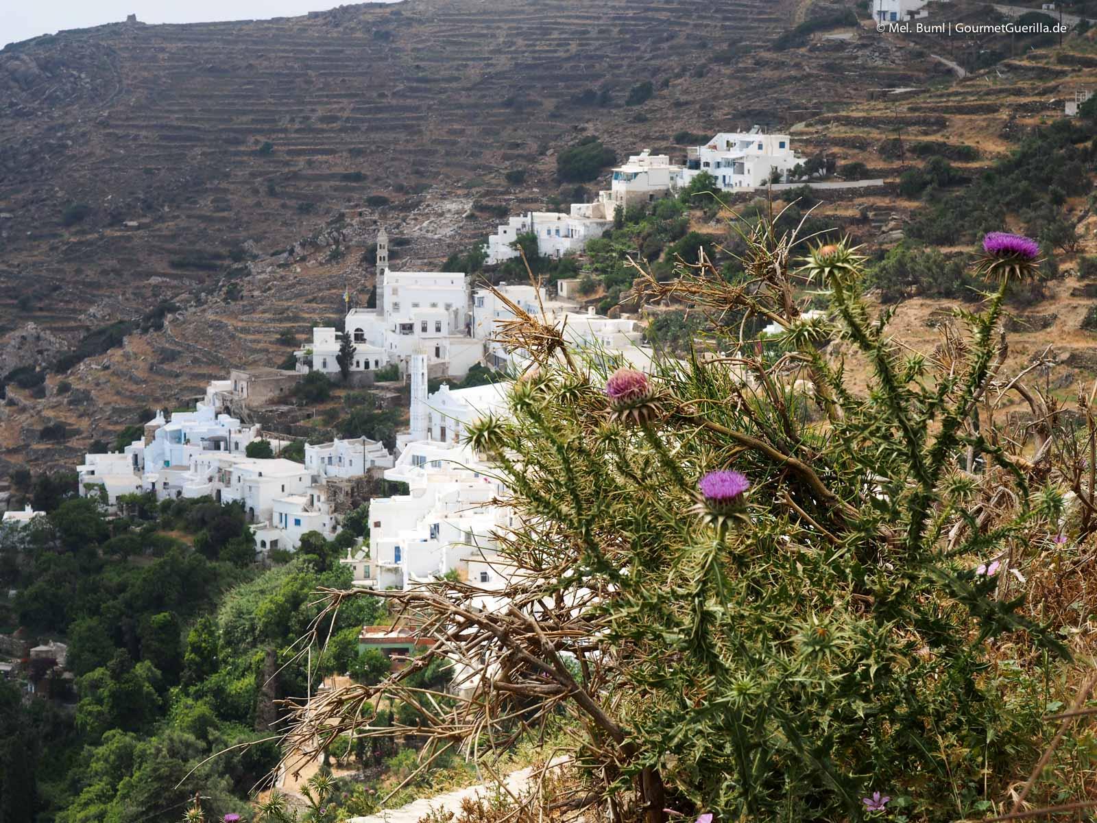Reisebericht Tinos Foodpath griechische Insel Kykladen Griechenland |GourmetGuerilla.de