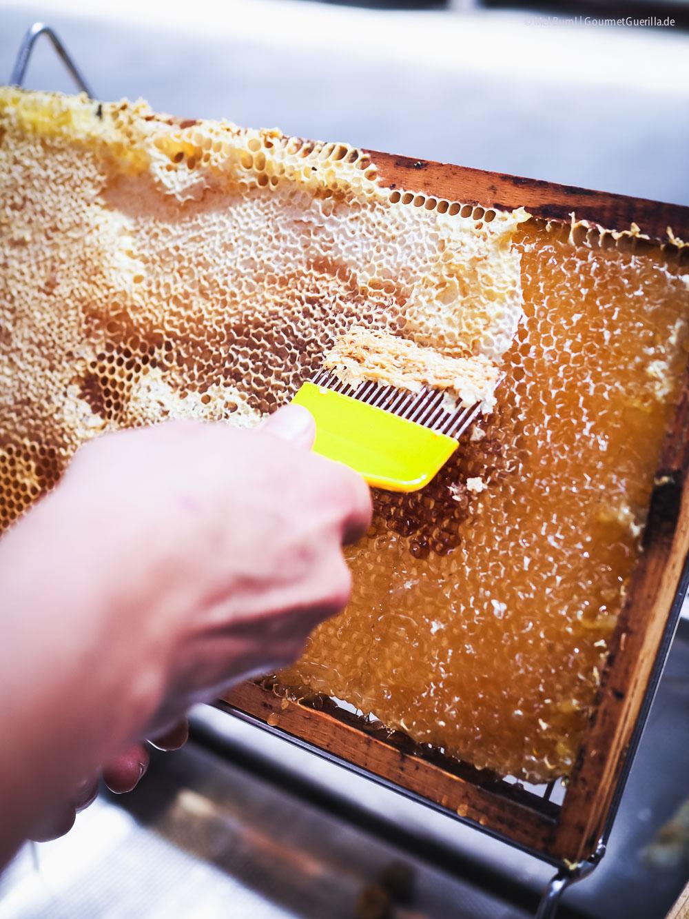 Honig vom Bienenhof Zillertal Imker |GourmetGuerilla.de