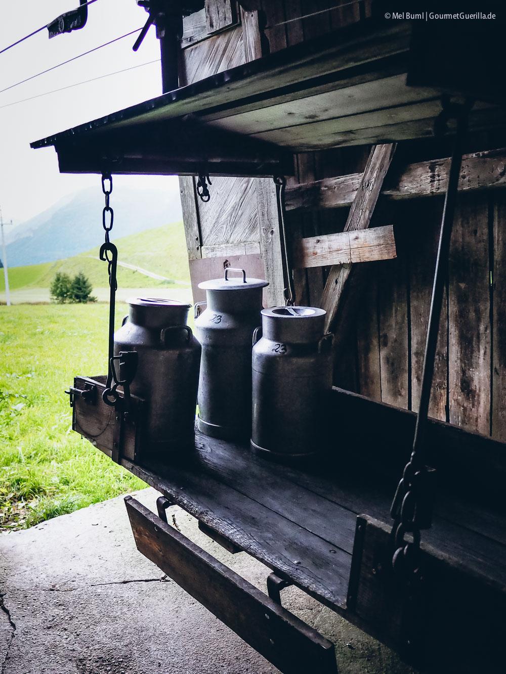 Milchseilbahn Heumilchkuehe in Tirol Ahornhof Oesterreich Sennermeetsblogger | GourmetGuerilla.de