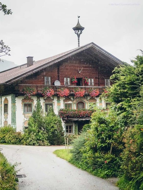 Bergkäse aus Bio-Heumilcjh Bio-Sennerei Hatzenstädt Tirol Österreich |GourmetGuerilla.de